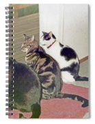 Three Cats Looking Out Into The Forest Spiral Notebook