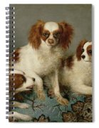 Three Cavalier King Charles Spaniels On A Rug Spiral Notebook