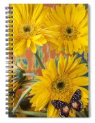 Three Daisy's And Butterfly Spiral Notebook