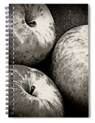 Three Day Supply  Spiral Notebook