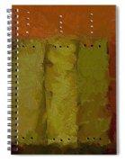 Three Spiral Notebook