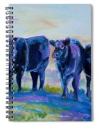 Three Mooges Spiral Notebook