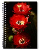 Three Of A Kind  Spiral Notebook