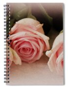 Three Pink Roses Spiral Notebook