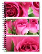 Three Pink Roses Landscape Spiral Notebook