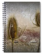 Three Prickly Teasels Spiral Notebook