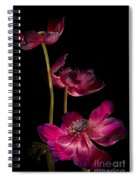 Three Purple Anemones Spiral Notebook
