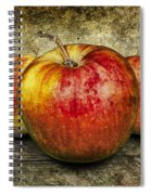 Three Red Apples Spiral Notebook