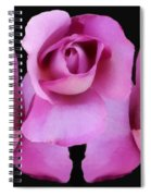 Three Roses Painterly Spiral Notebook