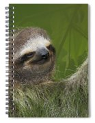 Three-toed Sloth Spiral Notebook