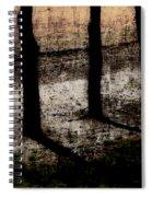 Three Tree Trunks Spiral Notebook