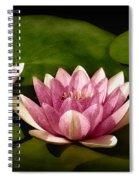 Three Water Lilies Spiral Notebook