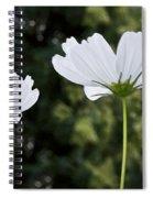 Three Wildflowers Spiral Notebook