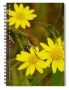 Three Yellow Amigos  Spiral Notebook
