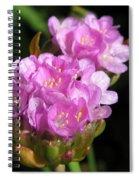 Thrift Named Joystick Lilac Spiral Notebook