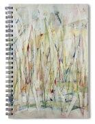 Through A Glass Brightly Spiral Notebook