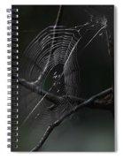 Through Dreams Spiral Notebook