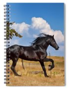 Thunderheads Spiral Notebook