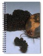 Tick With Eggs Spiral Notebook