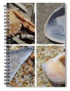 Tideline Treasures Spiral Notebook