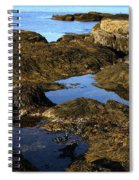 Tidepool In Maine Spiral Notebook