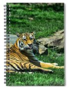 Tiger - Endangered - Lying Down - Tongue Out Spiral Notebook