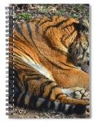 Tiger Behavior Spiral Notebook