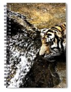 Tiger Falls Spiral Notebook