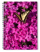 Tiger In The Phlox 5 Spiral Notebook