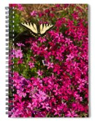 Tiger In The Phlox 6 Spiral Notebook