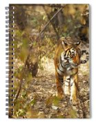Tiger In The Undergrowth At Ranthambore Spiral Notebook