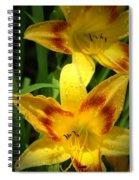 Tiger Lilies Spiral Notebook