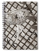 Tiger Lily And Rusty Gate Spiral Notebook