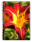 Tiger Lily0226 Spiral Notebook