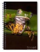 Tiger-stripe Monkey Frog Spiral Notebook