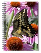 Tiger Swallowtail Spiral Notebook