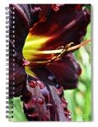 Timber Creek Ace Spiral Notebook