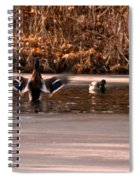 Time For Me To Fly Spiral Notebook