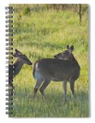 Time To Be On Your Own Son 5981 Spiral Notebook