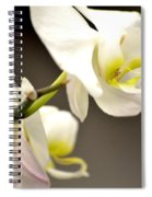 Time To Bloom Spiral Notebook