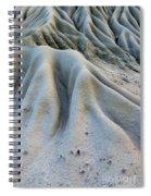 Timelines Spiral Notebook
