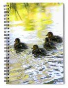 Tiny Baby Ducks Spiral Notebook