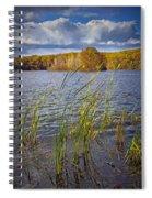 Tiny Island On Hall Lake No 0086 Spiral Notebook