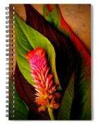 Tiny Plume Spiral Notebook