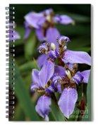 Tiny Purple Iris Spiral Notebook