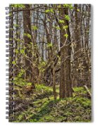 Tire Trees Spiral Notebook