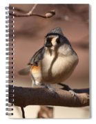 Titmouse - Split By Shadows Spiral Notebook
