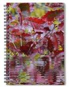 Tn Fall Water Spiral Notebook