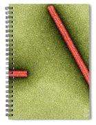 Tobacco Mosaic Virus, Tem Spiral Notebook