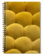 Tokay Gekko Scales Spiral Notebook